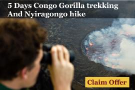 5 Day Congo Gorilla Trekking and Nyiragongo Hiking