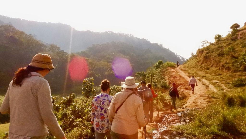 Price Of Uganda Gorilla Trekking Tour Cost Of Uganda Gorilla Trekking Tour