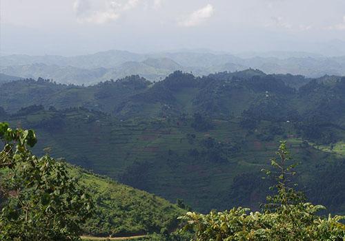 Rushaga Region