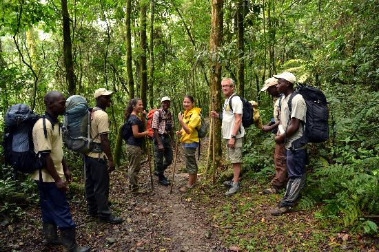 What to pack for your gorilla trekking tour