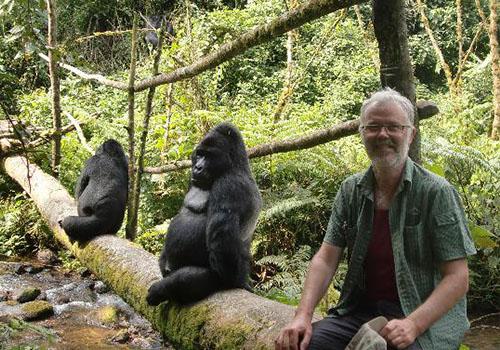 Gorilla Trekking In Uganda Via Kigali Rwanda